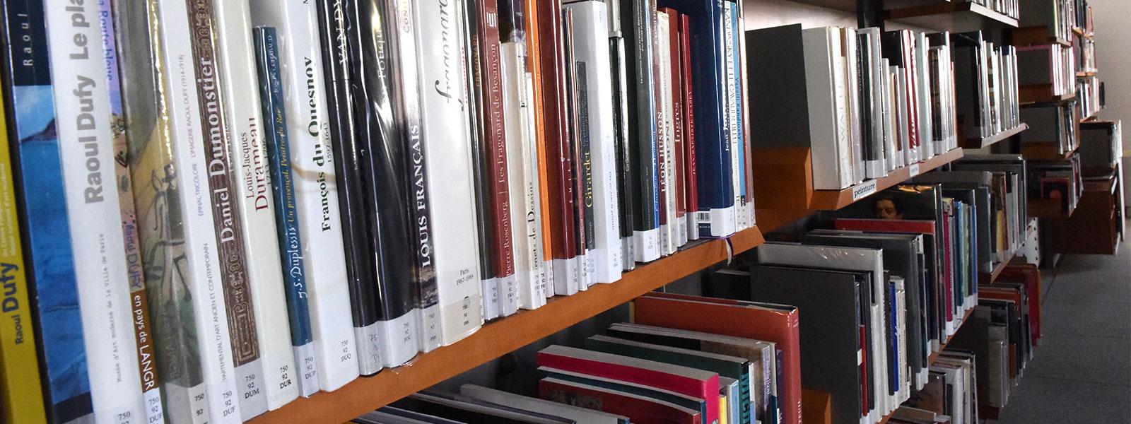 Détail de la bibliothèque